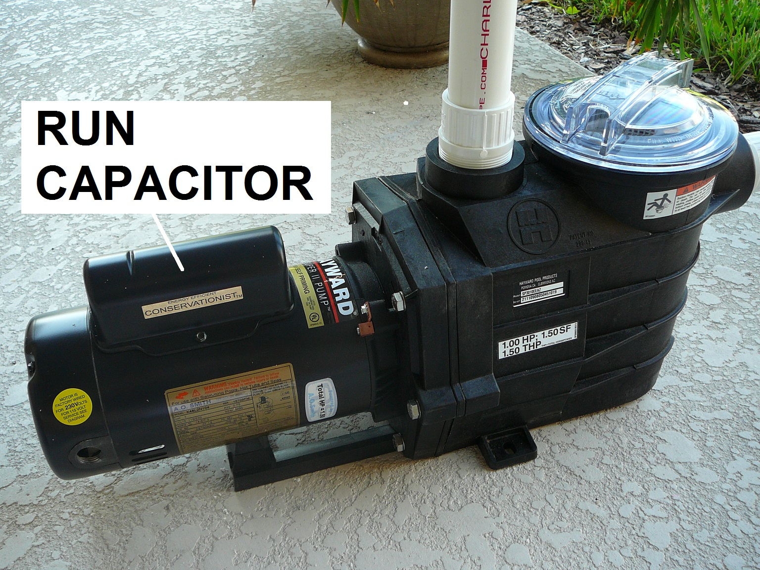 1 p1060078 1?format=jpg&scale=both&mode=pad&anchor=middlecenter&width=300&height=250 how to select the right capacitor for your pool pump motor  at aneh.co