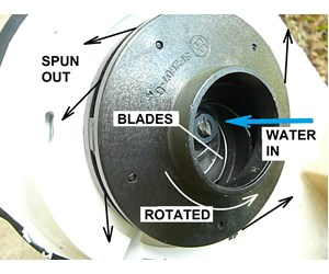How To Replace A Sta Rite Max E Pro Pump Impeller