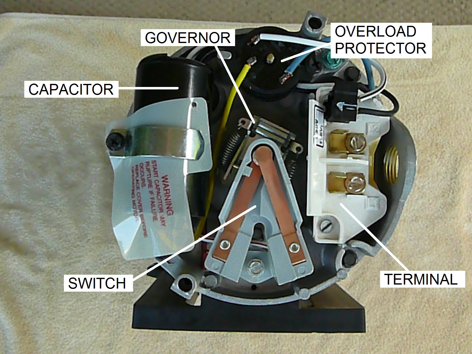 1 p1200580?format=jpg&scale=both&mode=pad&anchor=middlecenter&width=300&height=250 how to replace ao smith motor parts overview inyopools com  at webbmarketing.co
