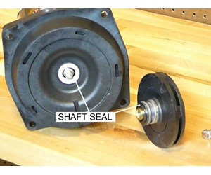 How to replace the bearings in a pool pump motor part ii Pool motor bearings