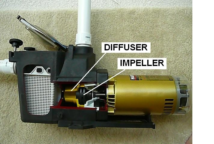 How To Determine Why A Pool Pump Won T Prime Inyopools Com