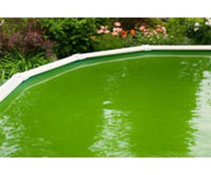 Above ground pool maintenance - Swimming pool green water treatment ...