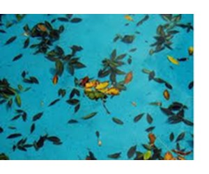 How To Winterize Your Swimming Pool - INYOPools.com