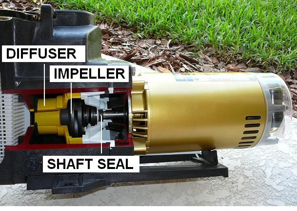 How to replace a pool motor shaft seal for Changing pool pump motor