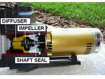 Pool Pump Motor Diagram Pool Pump System Diagram Elsavadorla
