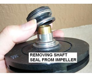 How to replace a pool motor shaft seal for Pool pump motor installation