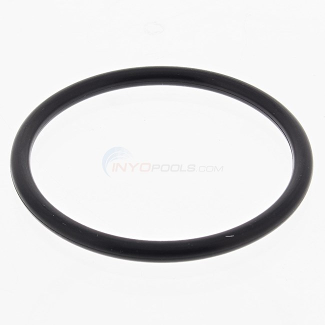 "AutoPilot 2"" O-Ring for Screen Side - 19062"