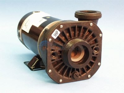 "Pump, 2 HP, 240V, 2 Spd, 2"" x 2"" - 300-5570SD"
