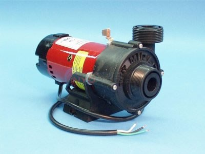 "Pump, 1Sp, 1/16HP 240V, 1""MBT - 300-9020"