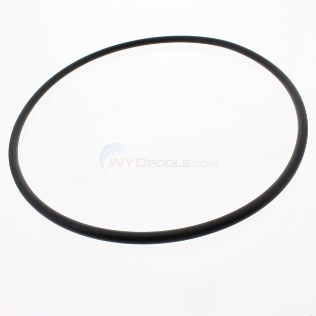 Pentair Seal Plate O-Ring - 351446