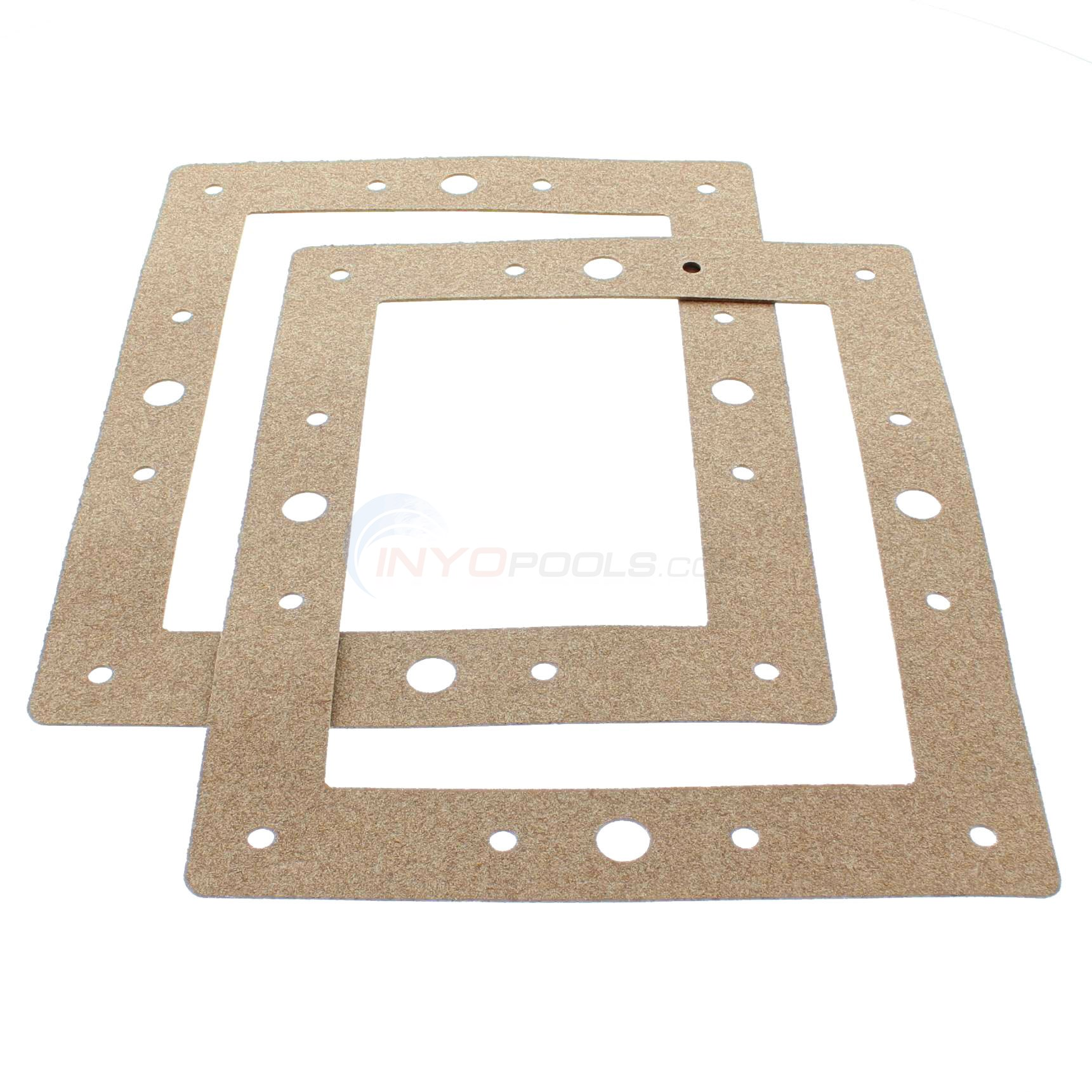 GASKET, 12 HOLE FACE PLATE (HAYSP-1084-B)