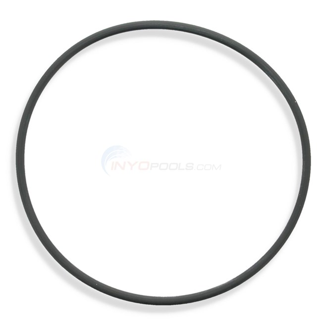 Waterco Lid O-ring - 635052