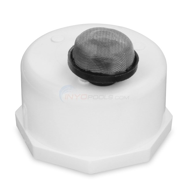 Pentair Cap And Strainer Assembly (274411)