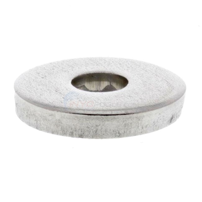 "Pentair Washer, 1"" Od, 5/16"" Id, 1/8"" Thick (195610)"