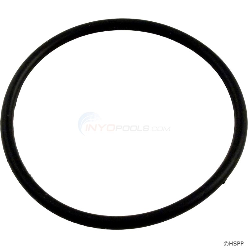 "O-Ring, Plastic Hi Flo 2"" Union (O-301)"