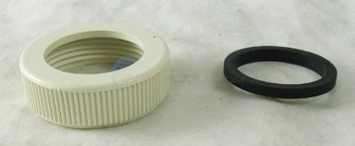 LTD QTY PUMP BG NUT & GASKET FE FLTR