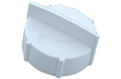 "POLY BG 1"" THRD CAP. With GASKET"