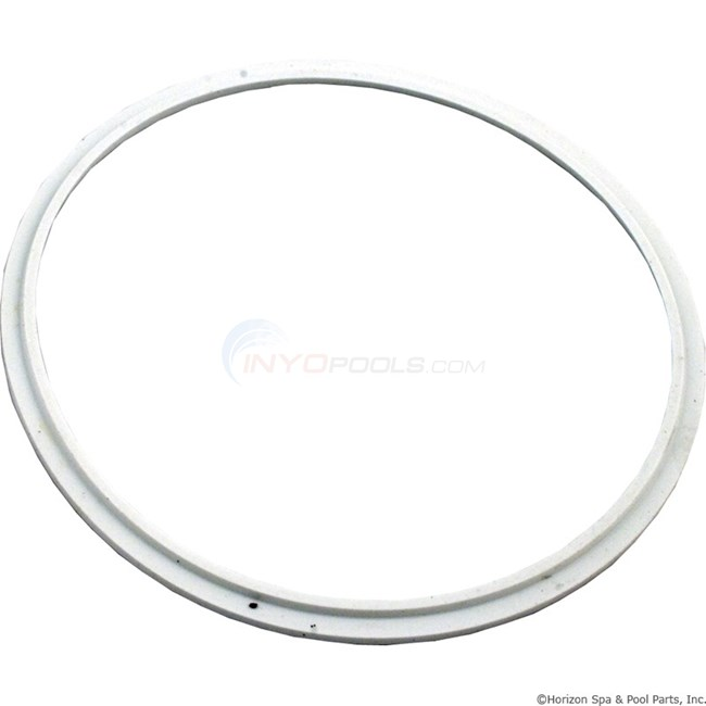 Pentair Lens Seal Aqualumin & Aqualumin II (78880200)