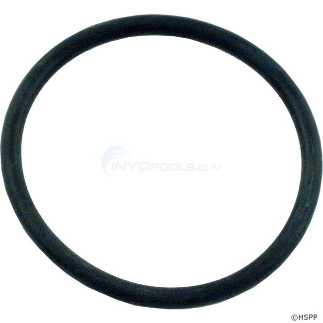 Pentair O-ring (79207100)