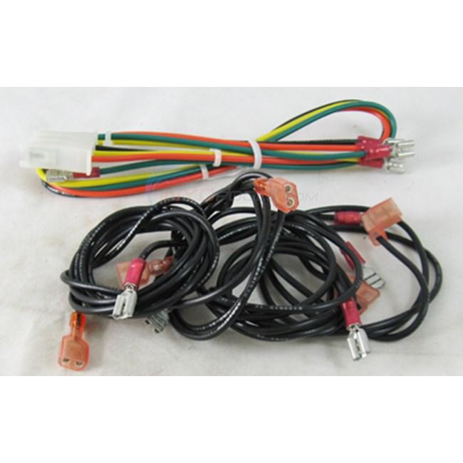 raypak wire harness, iid, 105b (006874f)