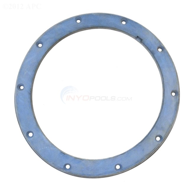 Pentair Gasket, For Metal Face Ring (634562)