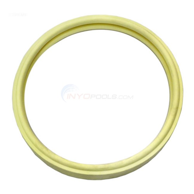 Pentair SunBrite II/ SunGlow II Gasket 8-3/8 in. Diameter - 79101601
