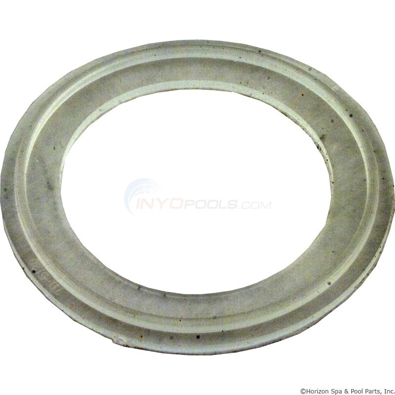 "O-Ring/Gasket, Waterway Mo-Flo, 2"" (711-5120)"