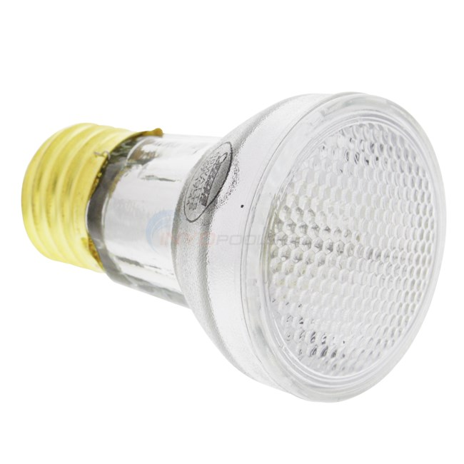 Pentair Bulb Floodlamp 60w 120v R20fl100 79108000