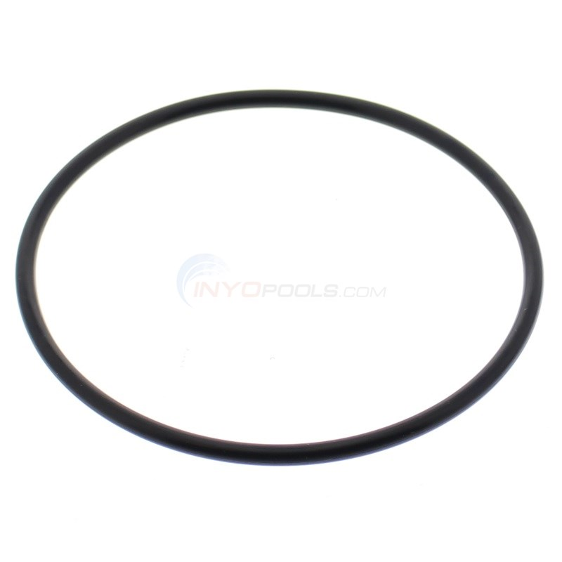 O-RING, STRAINER COVER (352)