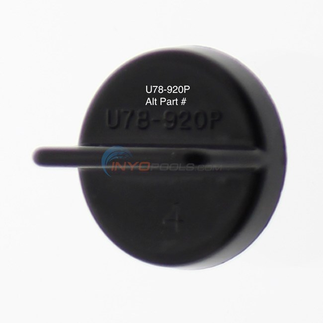 Pentair Drain Plug w/ O-ring - U178-920P