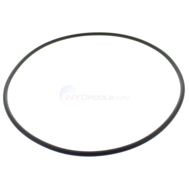 Pentair Tank O-ring - 31935-0001