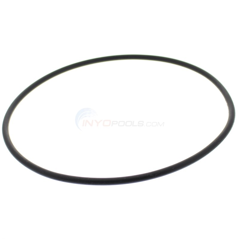 STA-RITE O-RING, SEAL PLATE (446)
