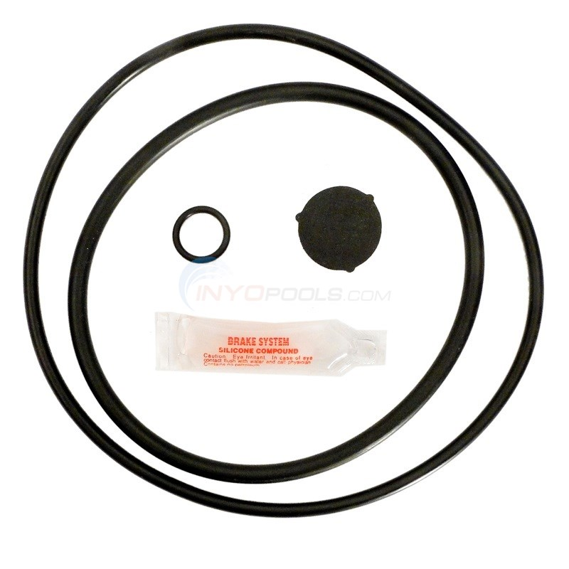 Hayward Pro Series O-ring Kit