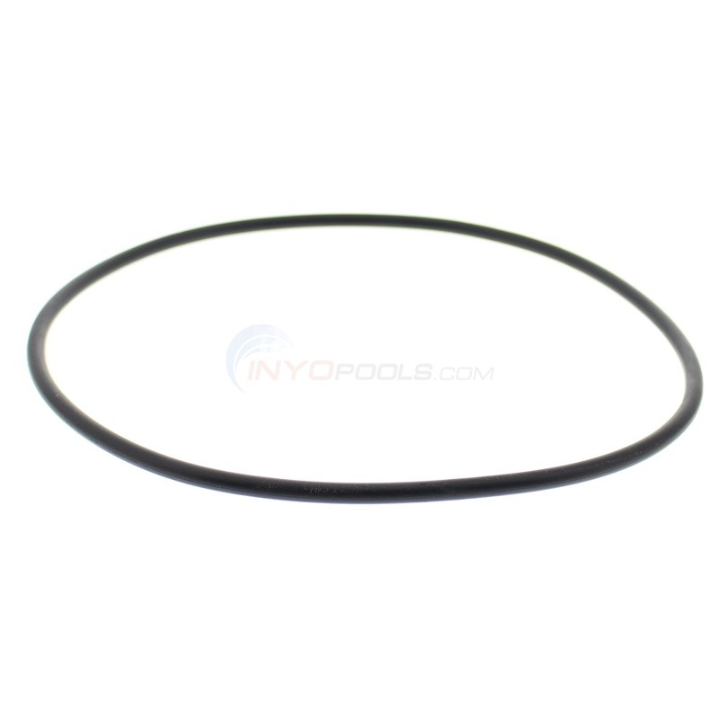 "O-ring for 16"" & 19"" Pooline Filter"