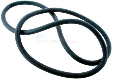 Hayward Filter Tank O-ring - OEM - DEX2400K