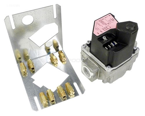 Hayward H-Series Conversion Kit Electronic Ignition 150 - 400 BTU Natural to LP - HAXCNK0009