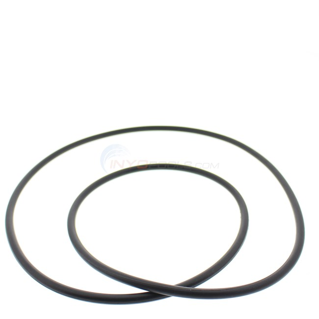 Hayward Body O-ring - CCX1000G