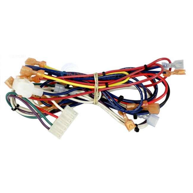 Hayward Wire Harness, H-series Above Ground (idxwha1931)