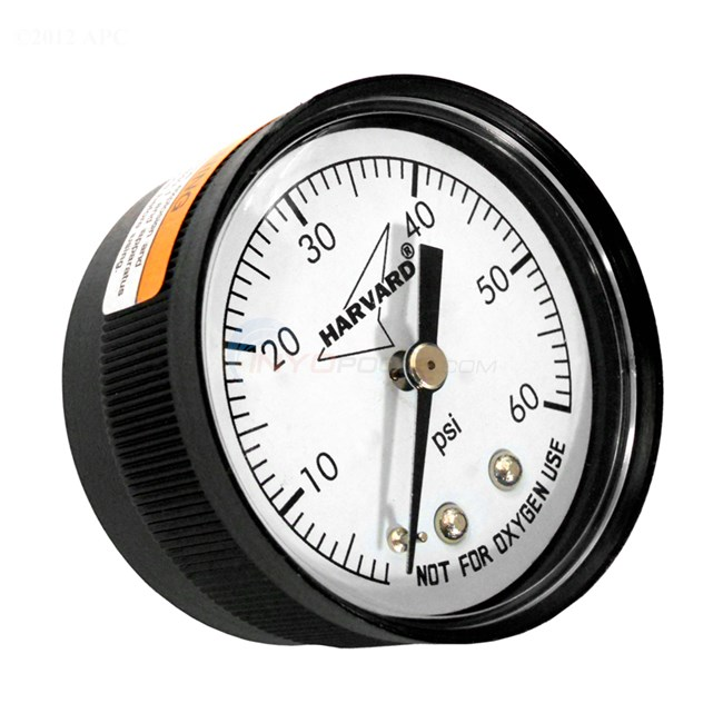Dolphin Filter Pressure Gauge Back Mount - IPPG6024B