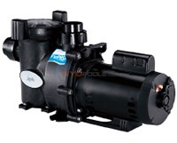 Jandy FloPro 2.5 HP Single Speed Pump - FHPM25