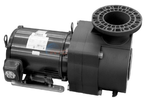 Pentair EQ Series Pump 5HP 1-Phase 230V W/o Strainer (EQ500) - EQ-500