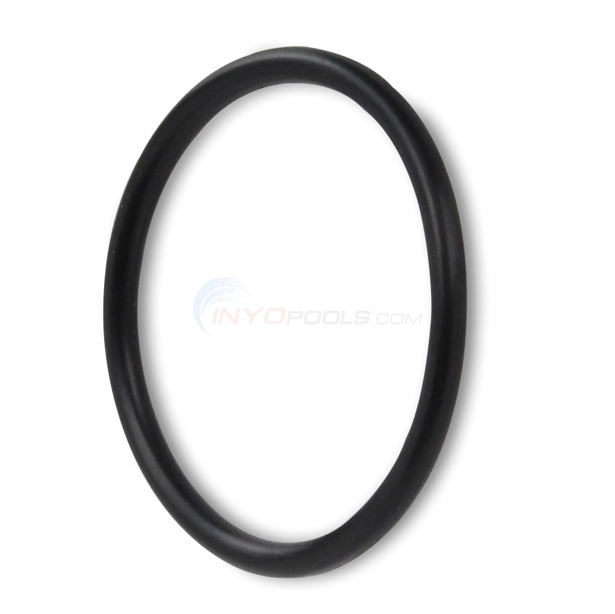 Drain Plug O-Ring for PL1520 Filter System