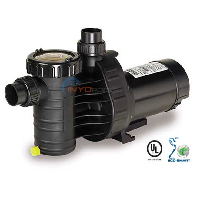 Speck A91 1 HP Two Speed Pool Pump (A91-II-2) - AG216-2100T-0ST
