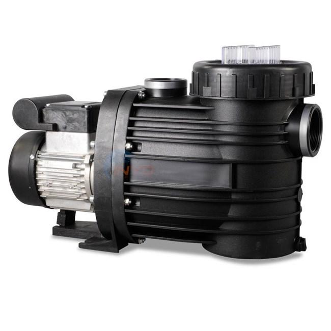 Wondrous Speck E90 1 Hp Single Speed Pool Pump E90 Ii 2095136045 Wiring Digital Resources Dimetprontobusorg