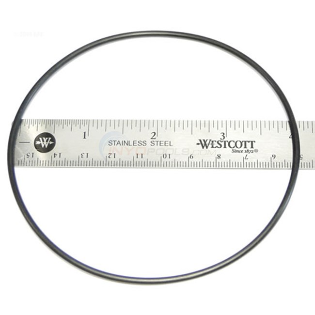 Zodiac Lm3 Cell O-ring - W150181