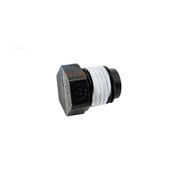 Pentair Plug 1/4 7840t (wc78-40t)