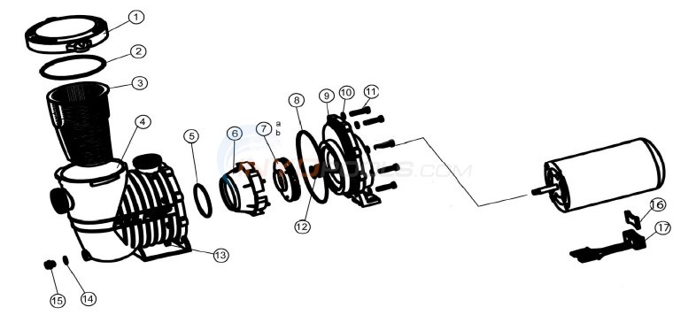 in ground pump 1 1 2 ports pureline pl16 splash splash pool rh inyopools com