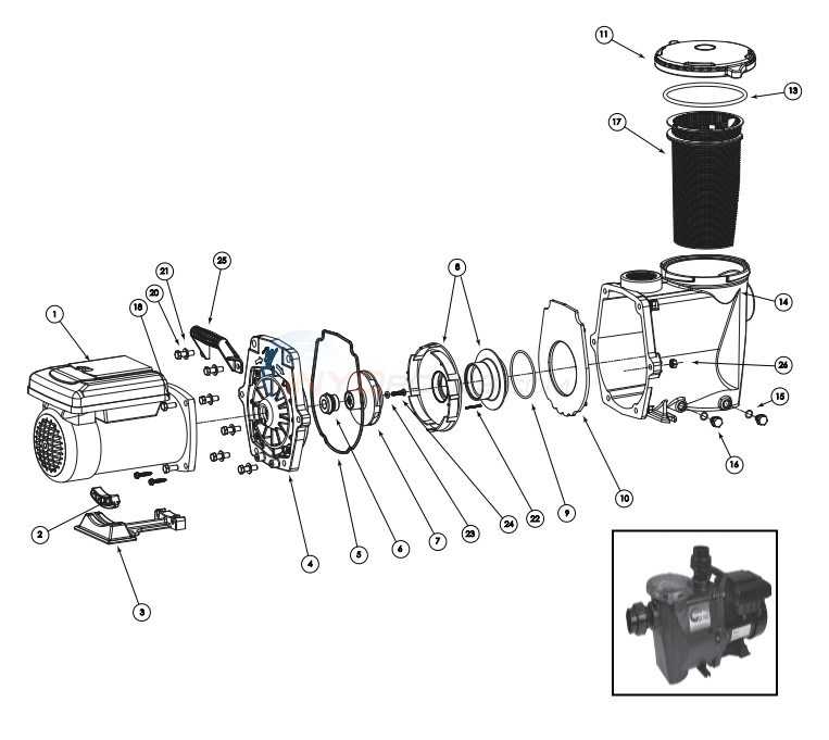 Waterway Econo-Flo VSA 165 Variable Speed Pump Diagram