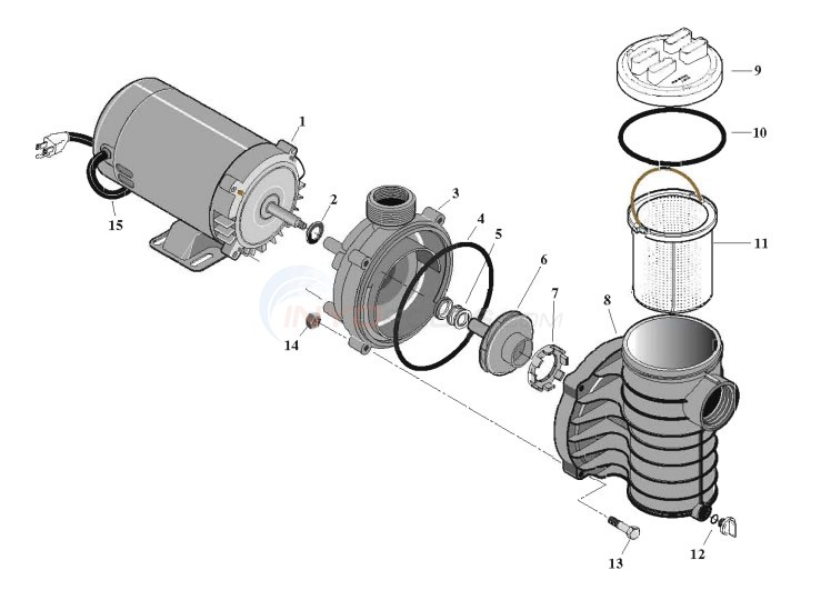 Flotec AG Pump, Models FP6121-01 & FP6131 Diagram