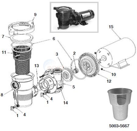 wiring diagram pentair challenger pentair optiflo pump - 3/4 to 1 1/2 hp parts - inyopools.com #5